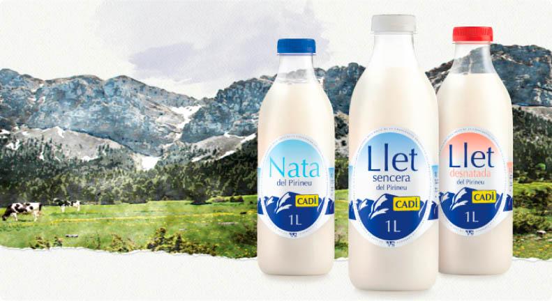 Nata i llet Cadí