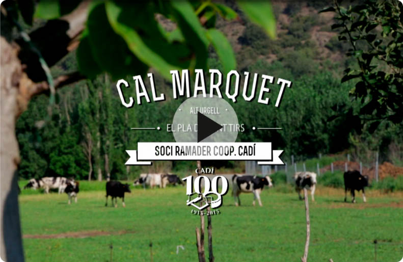 Cadí Cal Marquet