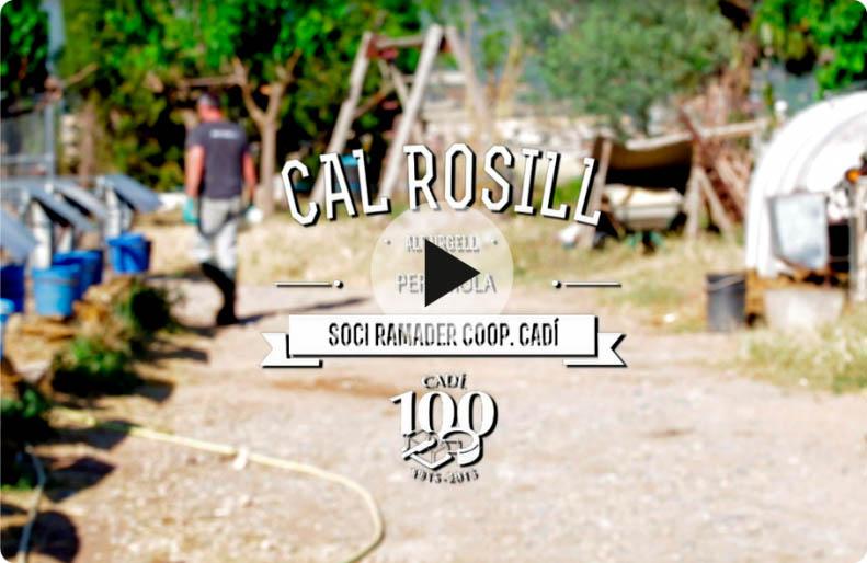 Cadí CAl Rosill